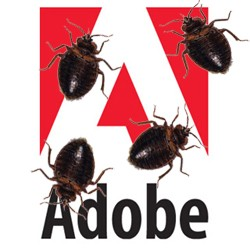 adobe flash reader acrobat bug exploit attack