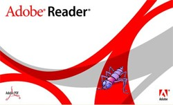 adobe reader vulnerability bug