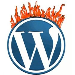 Wordpress Vulnerability Fire