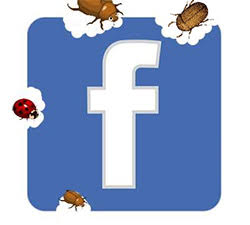 facebook phishing scam stopped