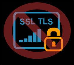 ssl tls web security old versions poodle beast attacks