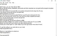 Topi Ransomware Screenshot