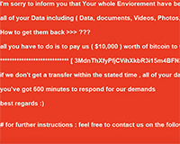 Black Kingdom Ransomware Screenshot
