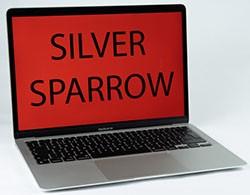 Silver Sparrow Mac Malware
